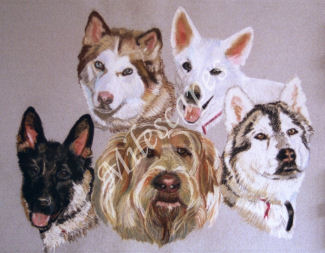 Five Dogs Portrait